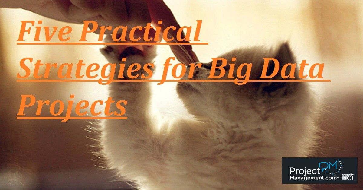 Five Practical Strategies for Big Data Projects