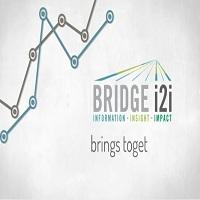 BRIDGEi2i